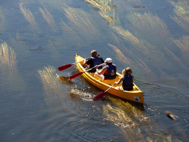 Canoe Riviere Dordogne Argentat©malikaturin 00774