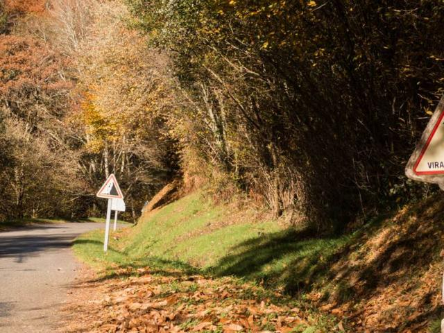 Country Roads In The Dordogne Valley
